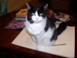 Cat on sketchbook